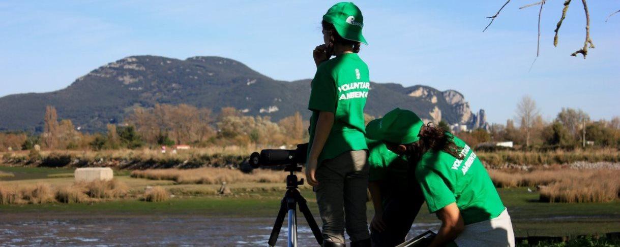 Observación de Aves con el Plan Provoca en Colindres